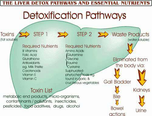 Detox Pathways